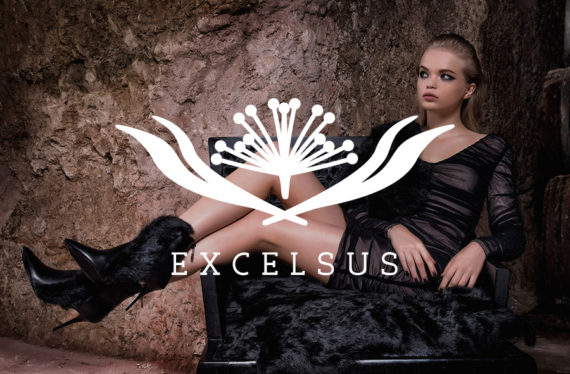 Excelsus | Web