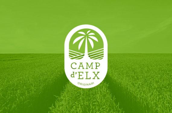 Camp d'Elx